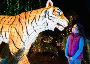 LA Zoo Lights: A Wild Wonderland of Light @ LA Zoo